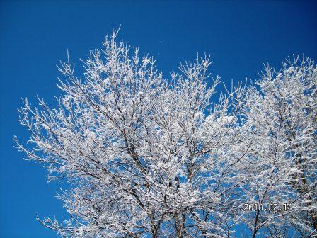 2010年2月13&14日原村にて(ブログ用).jpg